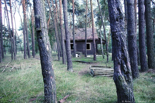 12_sauna