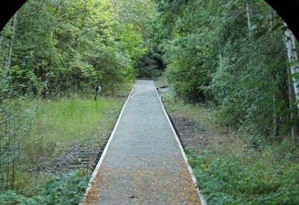 Le Natur-Park Südgelande à Berlin