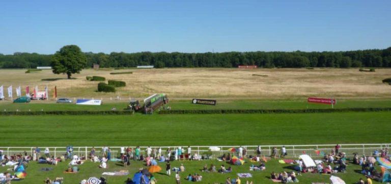 Courses de chevaux dans le Brandenburg