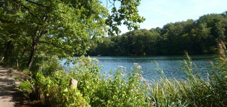 Lac de Schlachtensee