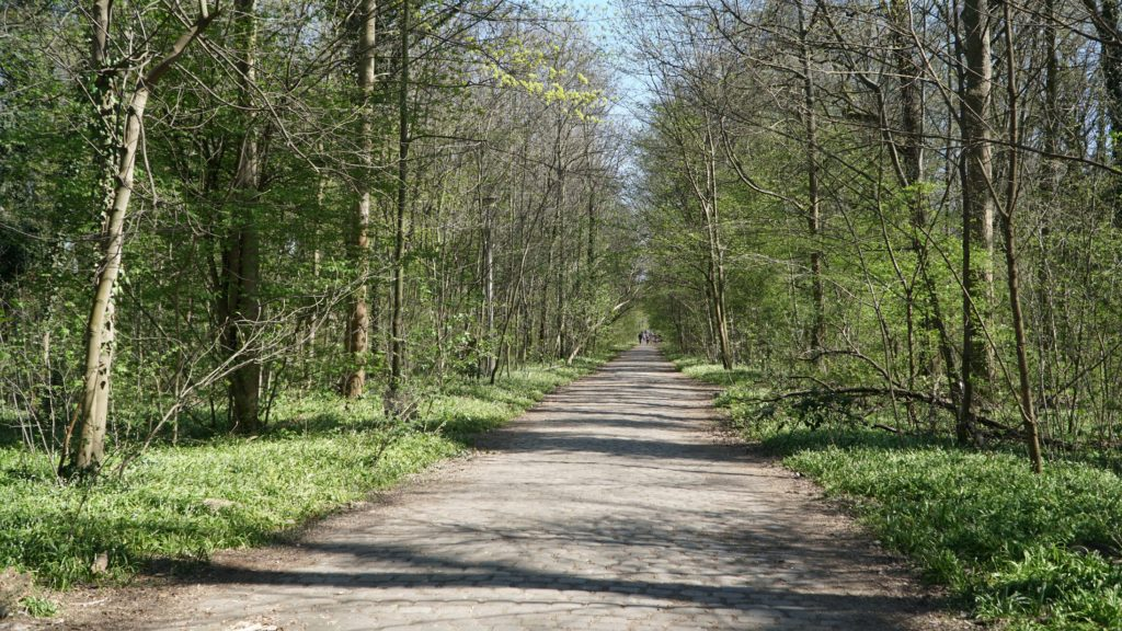 Circuit en vélo à Plänterwald