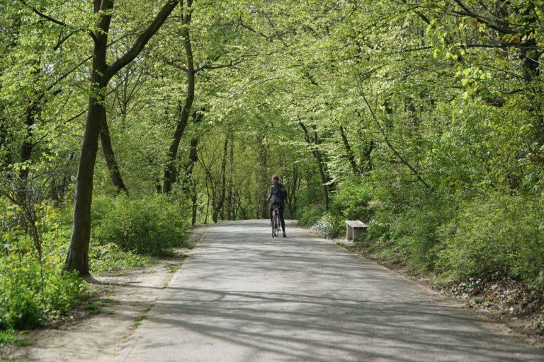 Le tour de Berlin en vélo